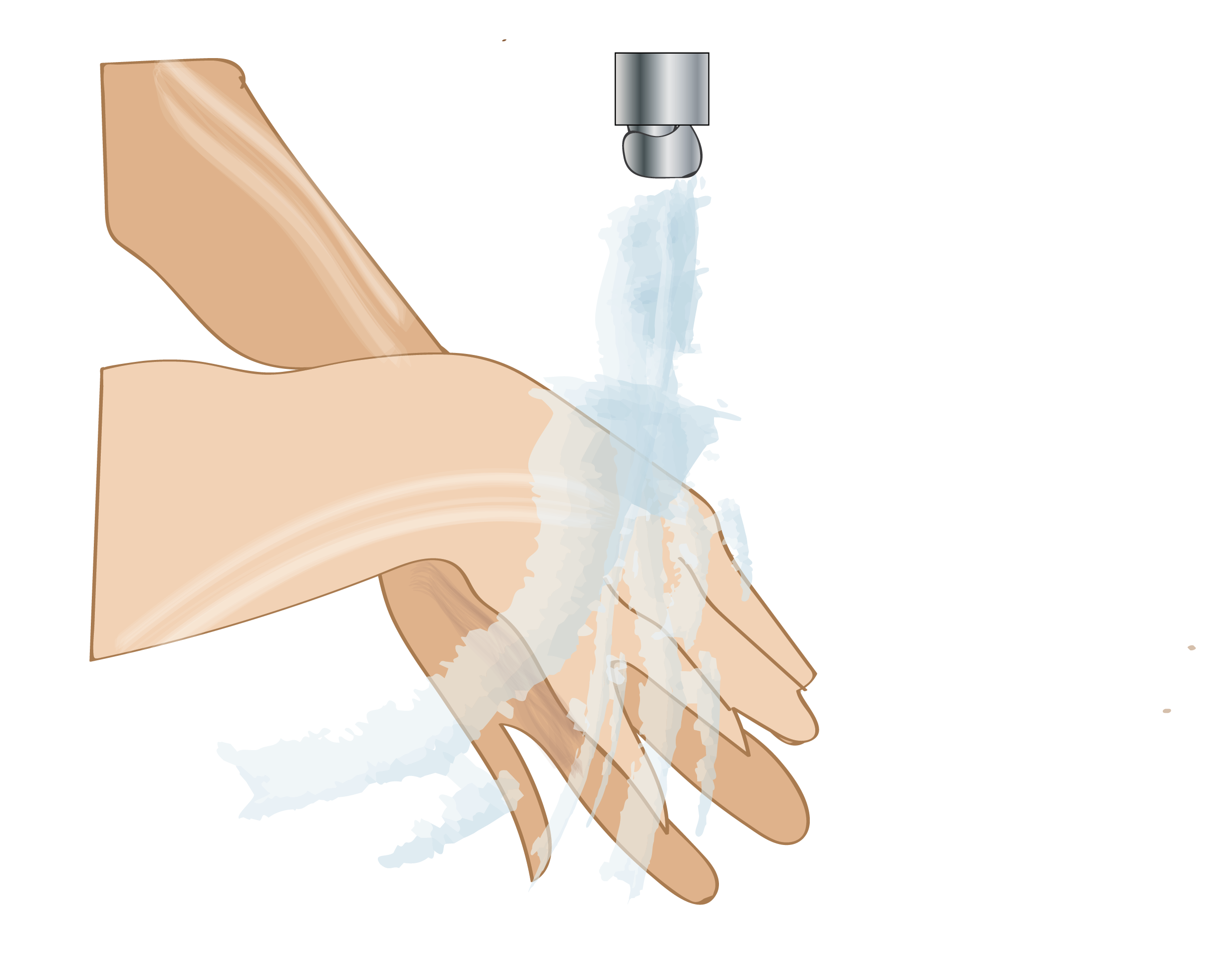 Rinsing Hands from Clinical Procedures for the Canadian Office Assistant, published by DDE Media Company, 2016