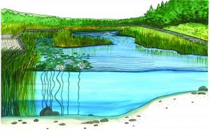 Marshland Painting