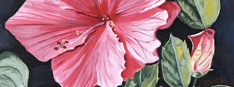Hibiscus Joy