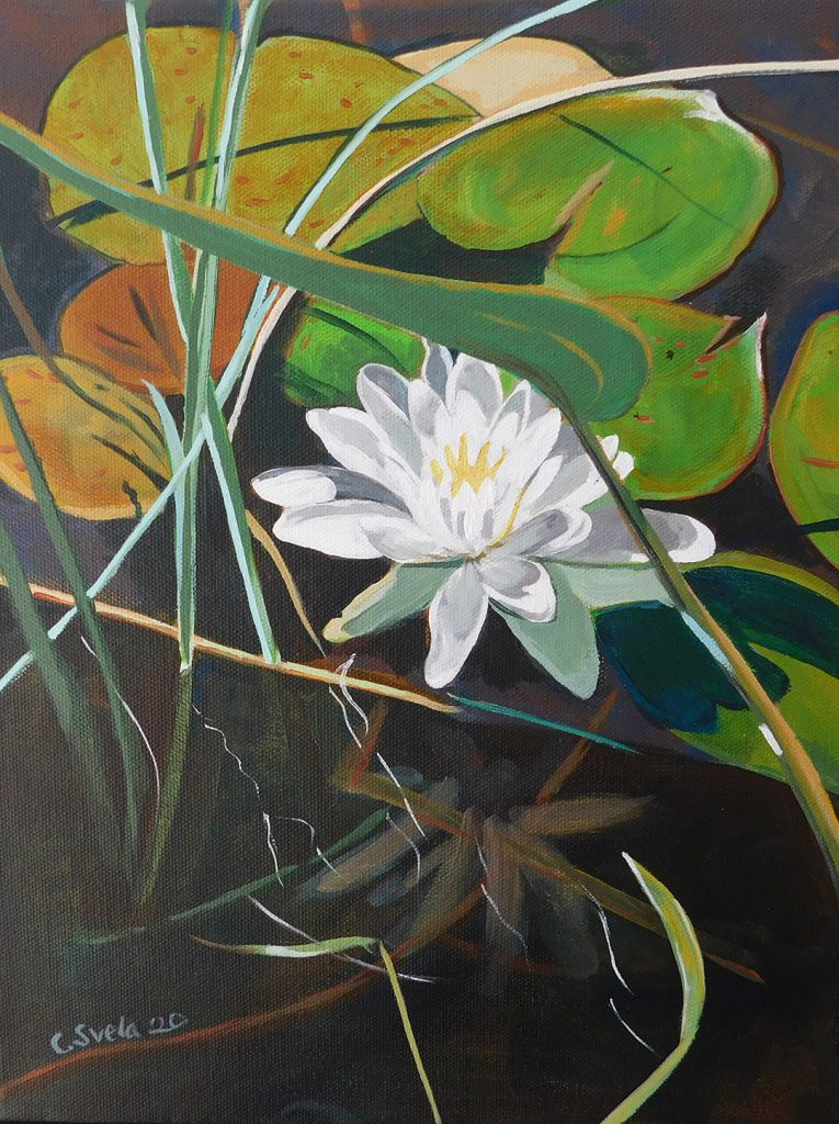 Water Lilly acrylic painting